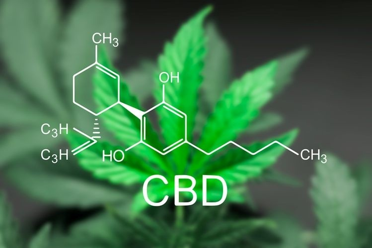 CBD and Its Legality