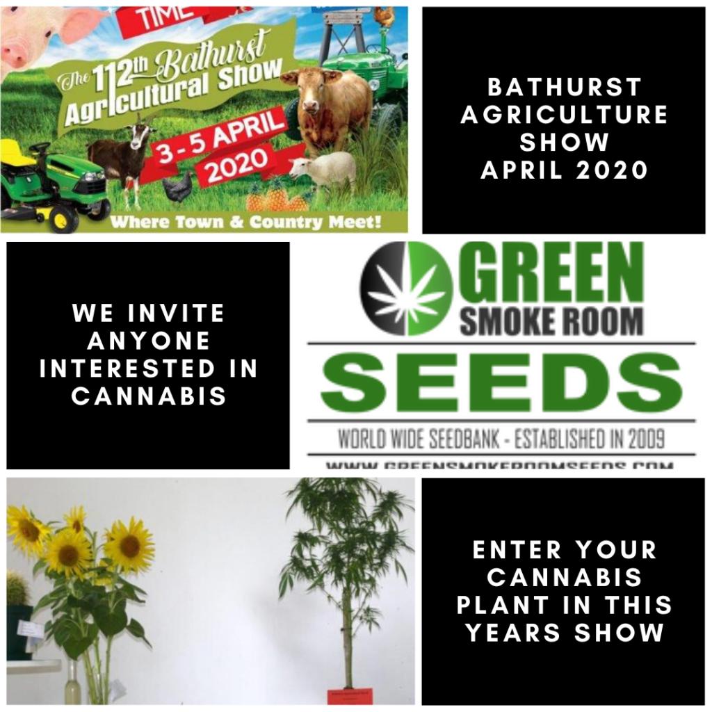 Bathurst Agricultural Show 2020