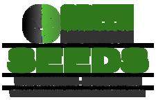 GreenSmokeRoom