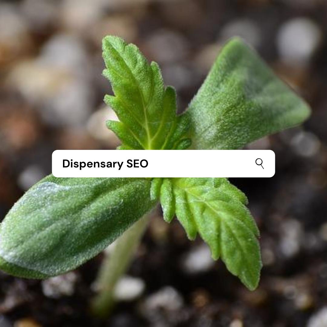Dispensary SEO
