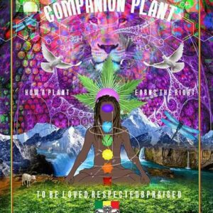 Cannabis the Companion Plant